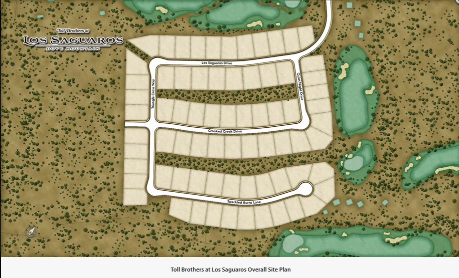 Toll Brothers at los saguaros site plan overall