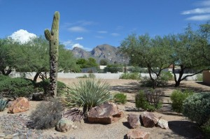 Saddle Valley Oro Valley Subdivision