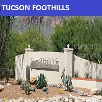 Tucson Real Estate Catalina Foothills az